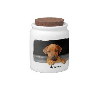 Rhodesian Ridgeback treats jar Candy Jars
