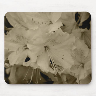 Rhodie Blossom Mouse Pad