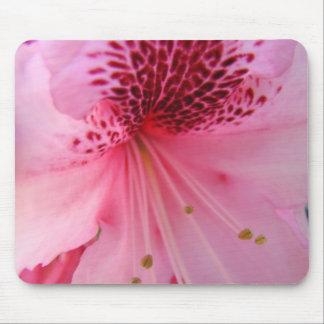RHODIES Azalea Flowers MOUSE PADS MOUSEPAD