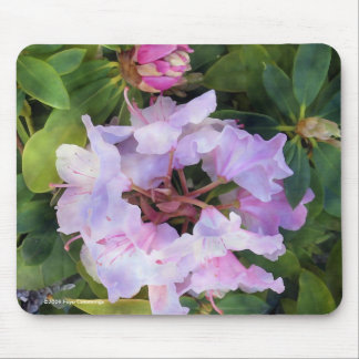 Rhodies Flower Mouse Pad