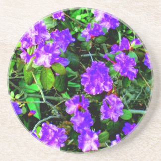 Rhododendron Abstract Coaster