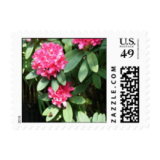 Rhododendron and Butterfly Postage