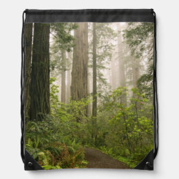 Rhododendron blooming among the Coast Redwoods / Drawstring Backpack