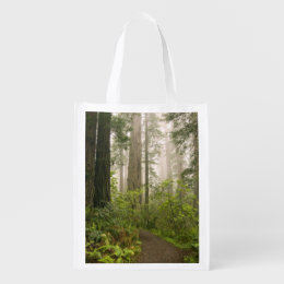 Rhododendron blooming among the Coast Redwoods / Grocery Bag