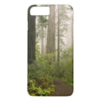 Rhododendron blooming among the Coast Redwoods / iPhone 8 Plus/7 Plus Case