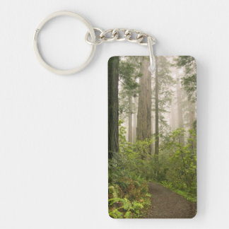 Rhododendron blooming among the Coast Redwoods / Keychain