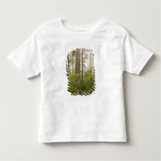 Rhododendron blooming among the Coast Redwoods / Toddler T-shirt