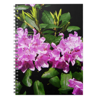 Rhododendron Closeup Spiral Notebook
