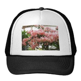 Rhododendron Trucker Hat