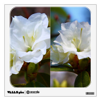 Rhododendron Hybrids - 'April Snow' Collage Wall Sticker
