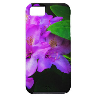 Rhododendron in Bloom iPhone SE/5/5s Case