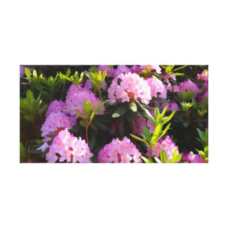rhododendron in full bloom canvas print