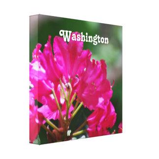 Rhododendron in Washington Canvas Prints