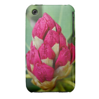 Rhododendron  iPhone 3G/3GS Case-Mate iPhone 3 Case