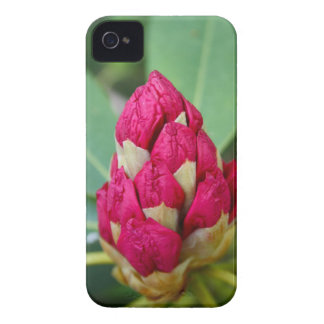 Rhododendron iPhone 4/4S Case-Mate Barely There iPhone 4 Case