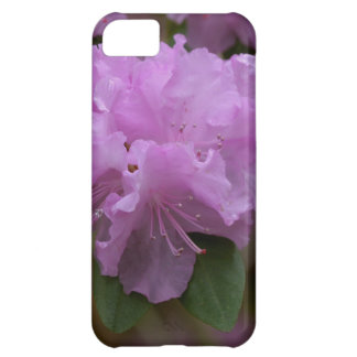Rhododendron Iphone 5 case