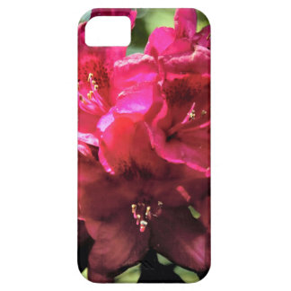 Rhododendron iPhone SE/5/5s Case