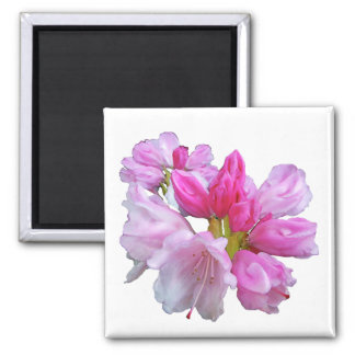 Rhododendron Magnet