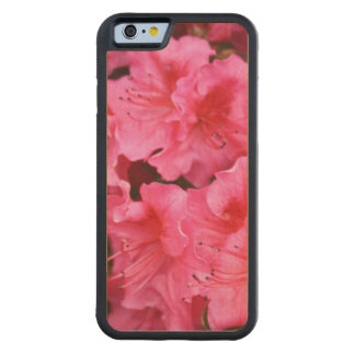 Rhododendron on iPhone 6 Bumper Cherry Wood Case