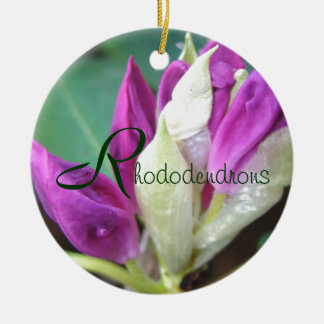 Rhododendron ornament-personalize Double-Sided ceramic round christmas ornament