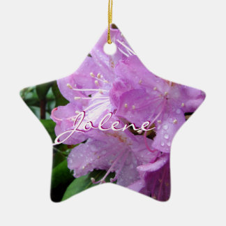 Rhododendron ornament-personalize Double-Sided star ceramic christmas ornament