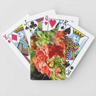 Rhododendron Poker Karten