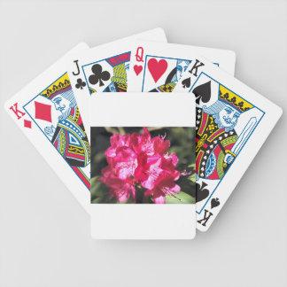 Rhododendron Pokerkarten