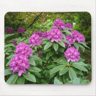 Rhododendron Ponticum Mouse Pad