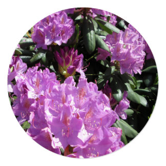 Rhododendron Purple Green Card