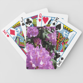 Rhododendron Purple Green Card Deck