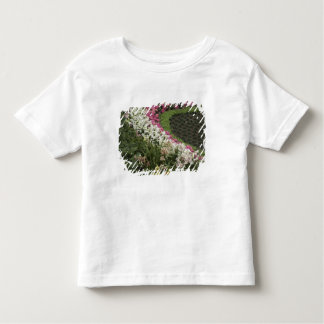 Rhododendron (Rhododendron catawbiense) Heath Toddler T-shirt