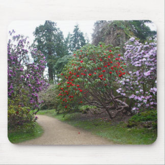 Rhododendrons at Belsay Hall, England Mouse Pad