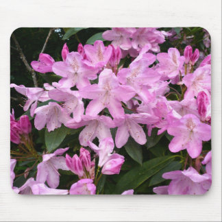 Rhododendrons II Mouse Pad