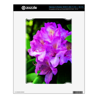Rhododendrons in Bloom Decal For The NOOK