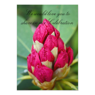 Rhododendrons  in Bud Invitation
