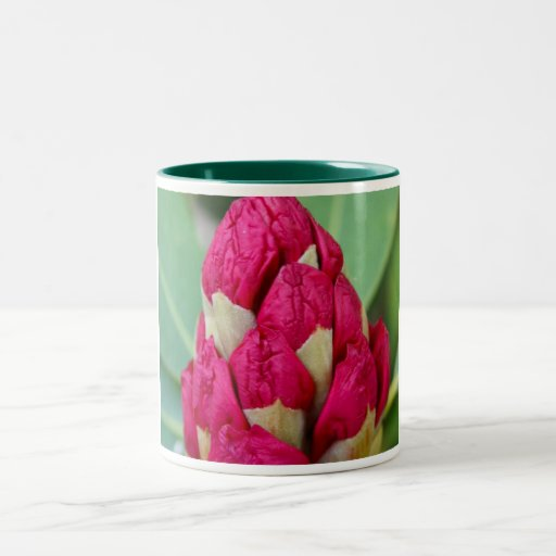 Rhododendrons  in Bud Mug