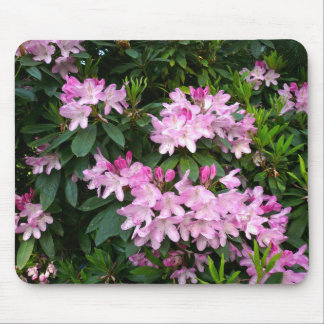 Rhododendrons IV Mouse Pad