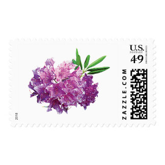 Rhododendrons With Leaves Postage