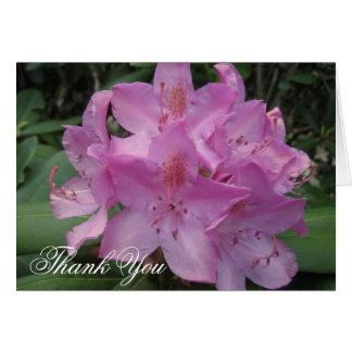 Rhody rosado le agradece tarjeta pequeña