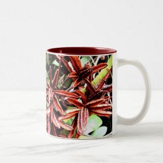 Rhody Seeds Two-Tone Coffee Mug