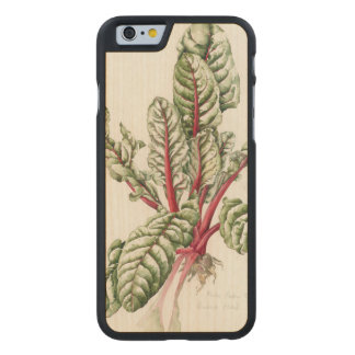 Rhubarb Chard 1992 Carved Maple iPhone 6 Case