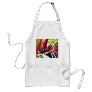Rhubarb Sprouting In The Spring Garden Adult Apron