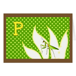 Rhymes for Bugs A-Z (P for Praying Mantis) Card
