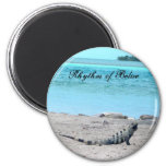 Rhythm of Belize Iguana by  the sea Refrigerator Magnet