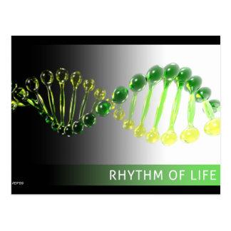 Rhythm of Life Post Cards