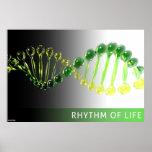 Rhythm of Life Poster