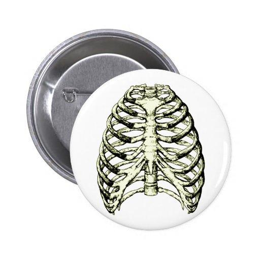 Rib Cage Bronze Button
