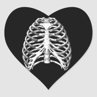 Rib Cage Heart Sticker
