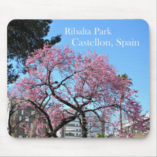 Ribalta Park, Spain Mouse Pad