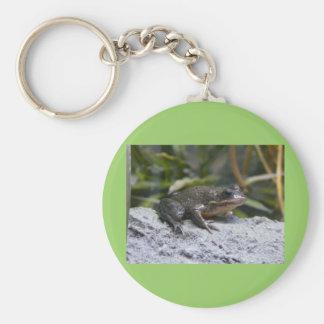 ribbit llavero redondo tipo pin